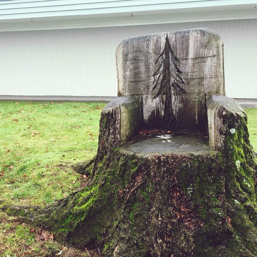 https://cf.ltkcdn.net/garden/images/slide/233192-850x850-2-garden-tree-stumps.jpg