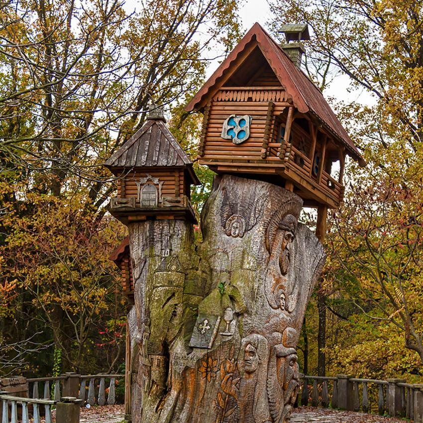 https://cf.ltkcdn.net/garden/images/slide/233215-850x850-24-garden-tree-stumps.jpg
