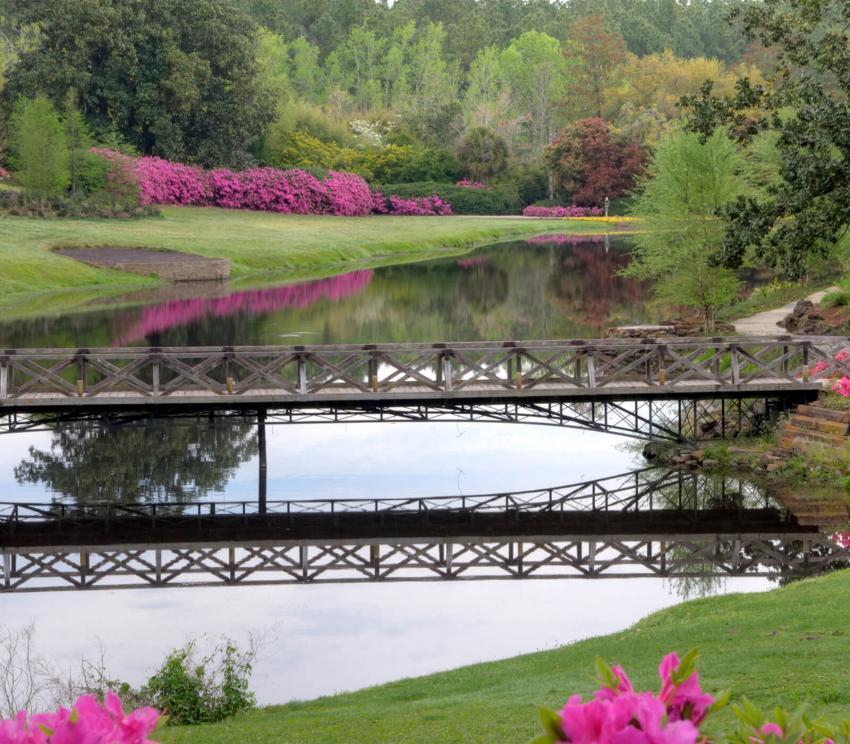 https://cf.ltkcdn.net/garden/images/slide/258178-850x744-6-bellingrath-gardens-alabama.jpg