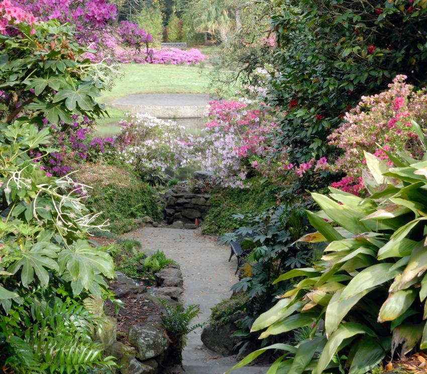 https://cf.ltkcdn.net/garden/images/slide/258180-850x744-4-bellingrath-gardens-alabama.jpg