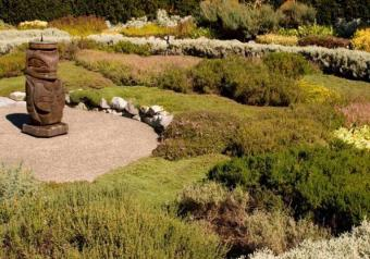 Getting Started with Landscape Design