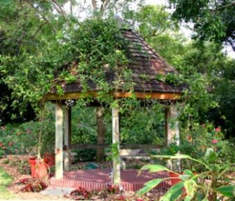 Harmony_garden_3.jpg