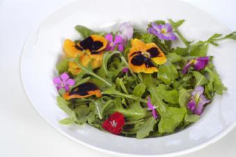 Edible Flowers List
