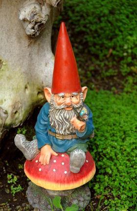 History of Gnomes