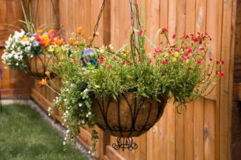 How to Make Hanging Flowers Baskets