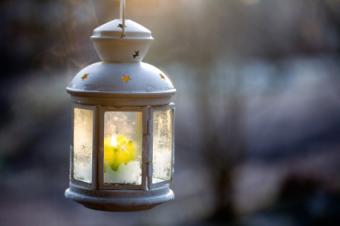 Garden Outdoor Hanging Lanterns