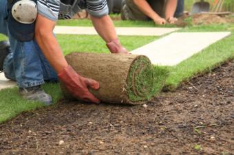 Repairing the Garden for Spring