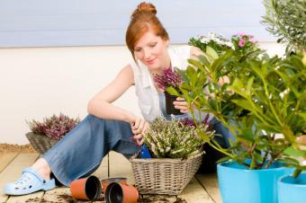 https://cf.ltkcdn.net/garden/images/slide/140485-849x565r1-Woman-Gardening.jpg