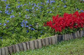Vertical logs edging flower bed
