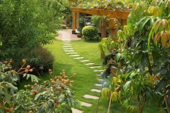 Backyard Landscape Design Pictures
