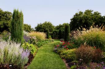 https://cf.ltkcdn.net/garden/images/slide/174248-849x565-iStock_000002272597Small.jpg