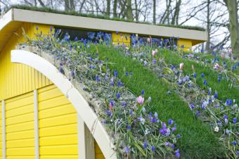 https://cf.ltkcdn.net/garden/images/slide/175337-850x566-carport-roof-garden.jpg