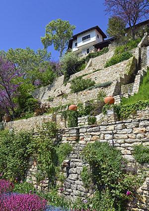 steep terraced garden