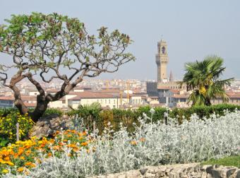 typical Mediterranean landscape
