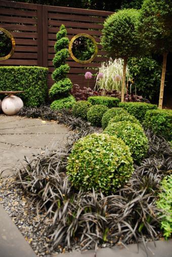 https://cf.ltkcdn.net/garden/images/slide/177242-567x847-modern-landscape-topiary.jpg