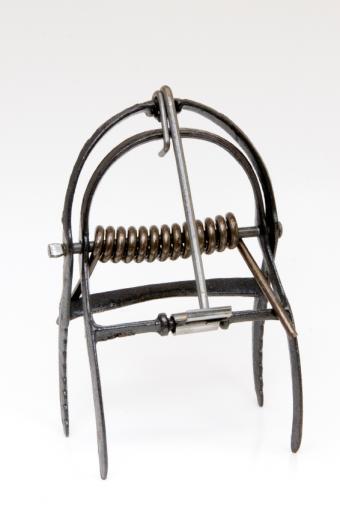 metal mole trap