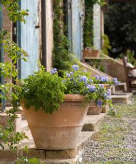 Tuscan country home with planters