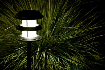 outdoor lighting for bunchgrass