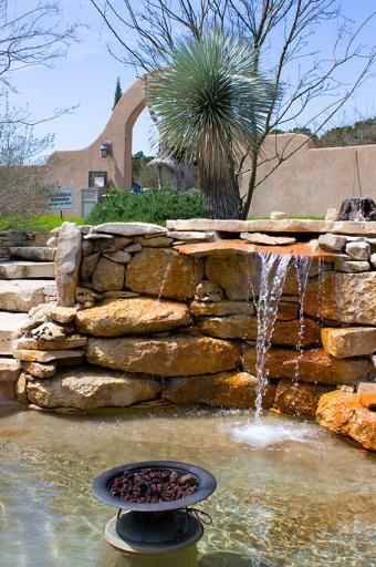 https://cf.ltkcdn.net/garden/images/slide/178696-565x850-fire-and-water.jpg
