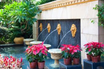 https://cf.ltkcdn.net/garden/images/slide/178713-850x565-lion-head-fountain.jpg