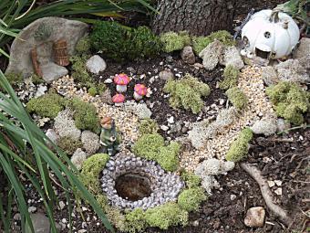 Fairy garden landscape project