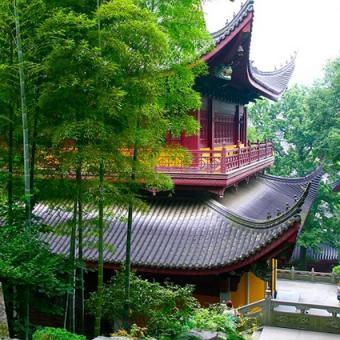 Bamboo asian theme