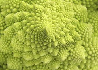 https://cf.ltkcdn.net/garden/images/slide/185030-850x609-romanesco-broccoli.jpg