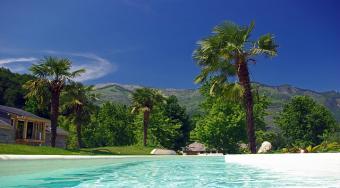 Good Landscape Plants to Use Near Pools