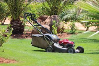 used lawn mower