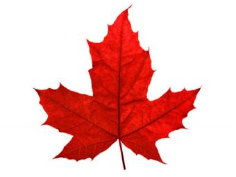 Red-Maple-Leaf.jpg