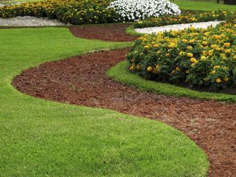 Park design with flower beds