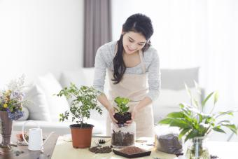 Young woman planting a potted plant