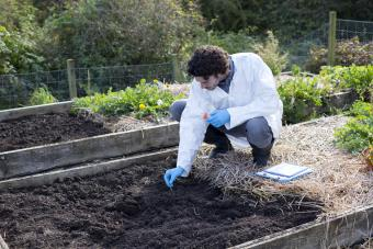 Carrying out a soil analysis