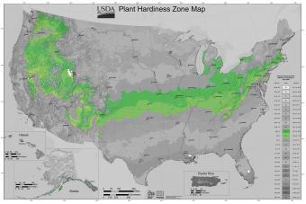 USDA Gardening Zone 6