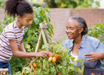 woman and granddaughter picking fruit