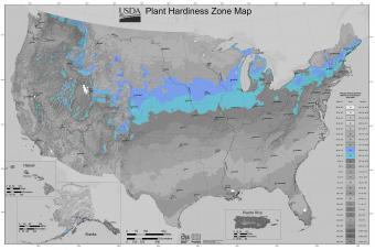 USDA Plant Hardiness Zone Map - Zone 5