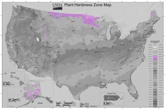 USDA Gardening Zone 3