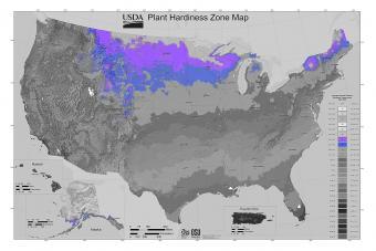 USDA Gardening Zone 4