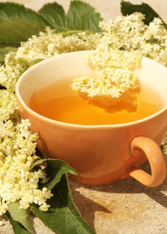 Cup of Elder Tea