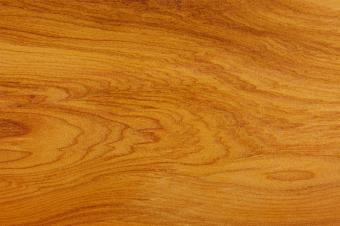 Yew tree wood panel