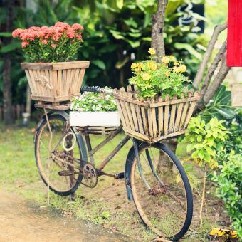 https://cf.ltkcdn.net/garden/images/slide/248518-850x850-flower-bike.jpg