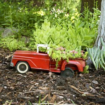 https://cf.ltkcdn.net/garden/images/slide/248541-850x850-flower-car.jpg