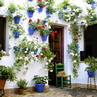 https://cf.ltkcdn.net/garden/images/slide/248545-850x850-courtyard.jpg