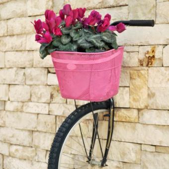 https://cf.ltkcdn.net/garden/images/slide/248555-850x850-bike-on-the-wall.jpg