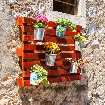 https://cf.ltkcdn.net/garden/images/slide/248557-850x850-pallets-and-flowers.jpg