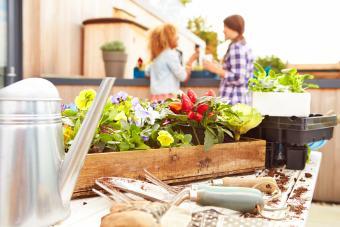 Examples of Unique Container Garden Ideas