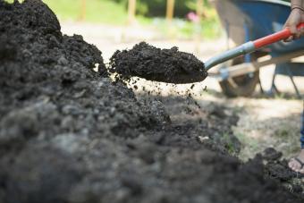 Shovel garden soil