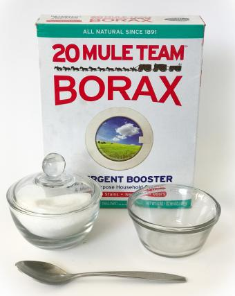 Borax and sugar flying ant repellent