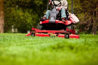 lawn mower noise repels moles