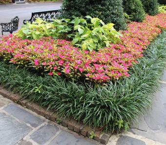https://cf.ltkcdn.net/garden/images/slide/258170-850x744-9-bellingrath-gardens-alabama.jpg